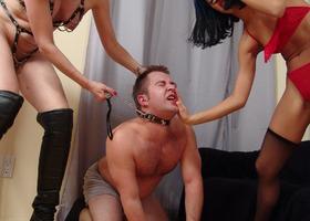 A femdom images set Image 4