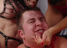 A femdom images set Image 8