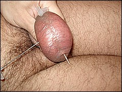 #2 Urethral Play Sample