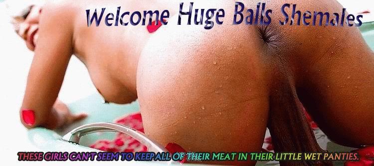 Join Huge Balls Shemales