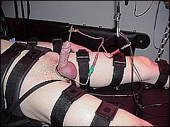 #5 Urethral Play Sample